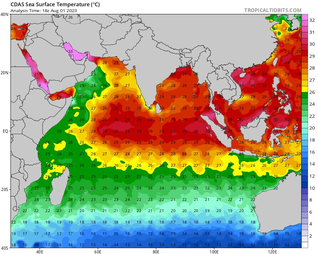 Image des SST dans l'océan Indien